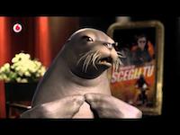 vodafone-foca